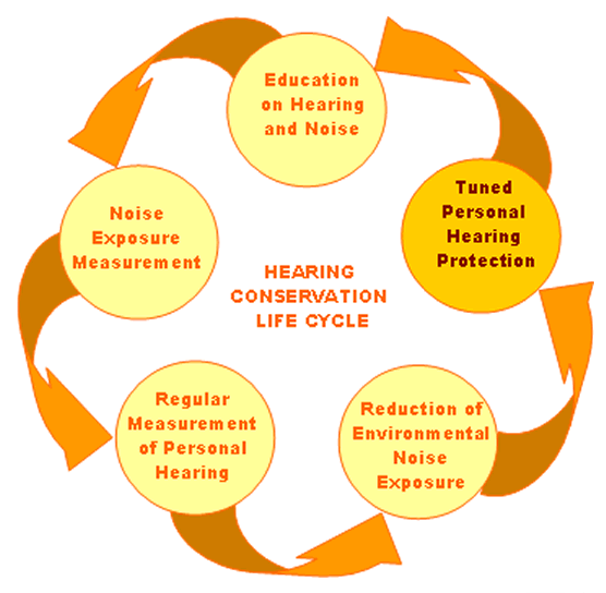 Hearing Conservation…Protecting workers from noise exposure? | Tirta